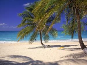 grand-cayman-beach